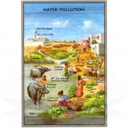 VKSI Water Pollution Chart